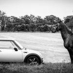 nueva nomenclatura sobre caballos de vapor